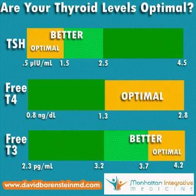 are your thyroid levels optimal